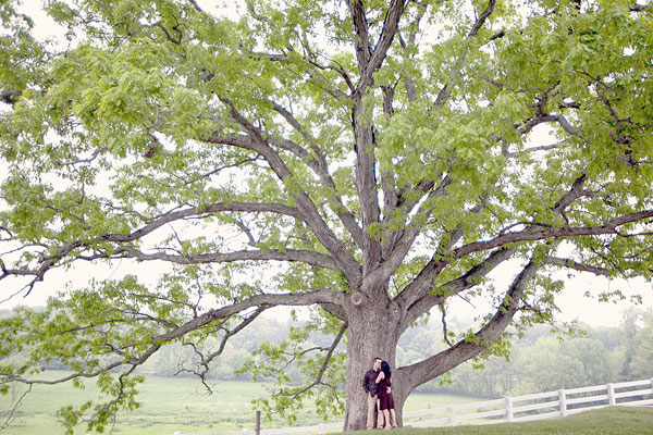 UConn, Horse Barn Hill, Storrs, CT Wedding Engagement Pictures Photos, Victoria Souza Photography, open field, horse, farm, rustic Best CT Wedding Photographer