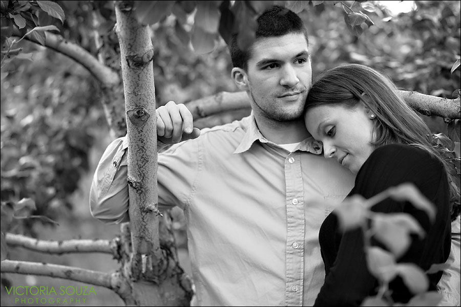 CT Wedding Photographer, Victoria Souza Photography, Roger's Orchards, Southington, CT Engagement Wedding Portrait Photos