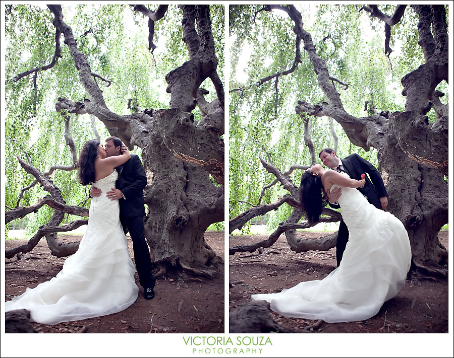 CT Wedding Photographer, Victoria Souza Photography, Cranbury Park, Norwalk, CT, Engagement Wedding Portrait Photos
