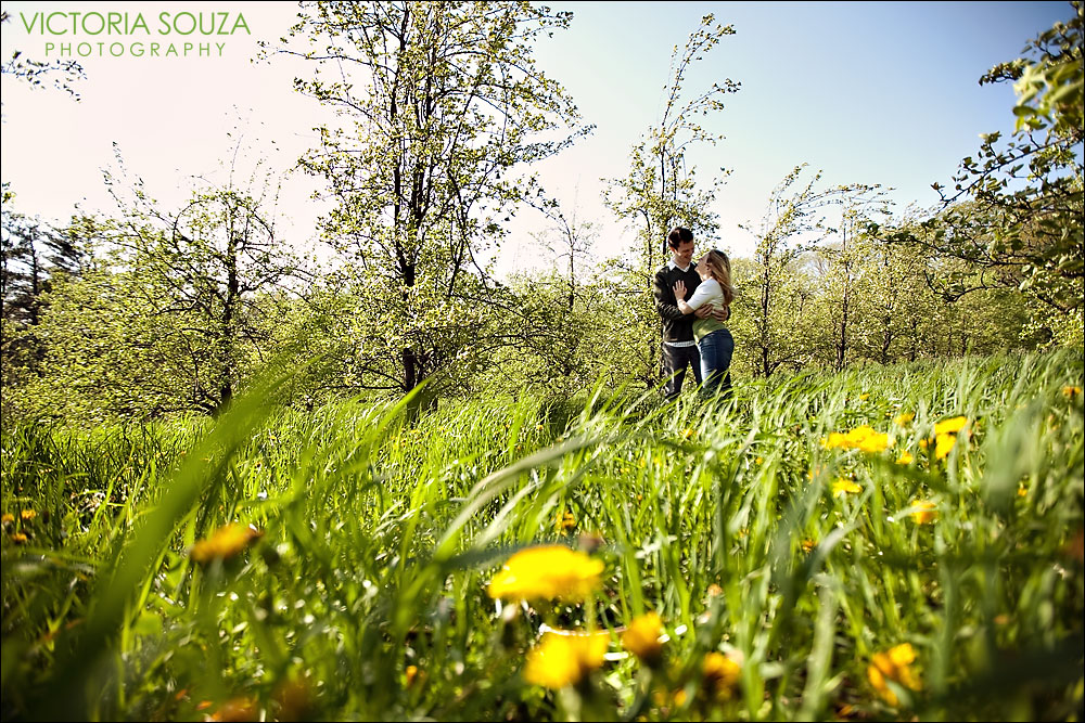 CT Wedding Photographer, Victoria Souza Photography, Ragged Hill Orchard, West Brookfield, MA, Wedding Engagement Portrait Photos